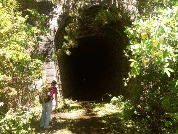 Fig N 6 Tunel el arbol boca oriente 2014