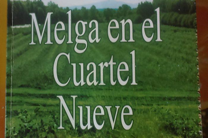 MELGA EN EL CUARTEL NUEVE de Sylvia Millahueque